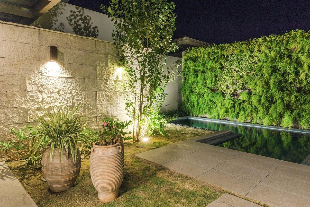 Plantas - Jardim vertical externo - jardim - vasos