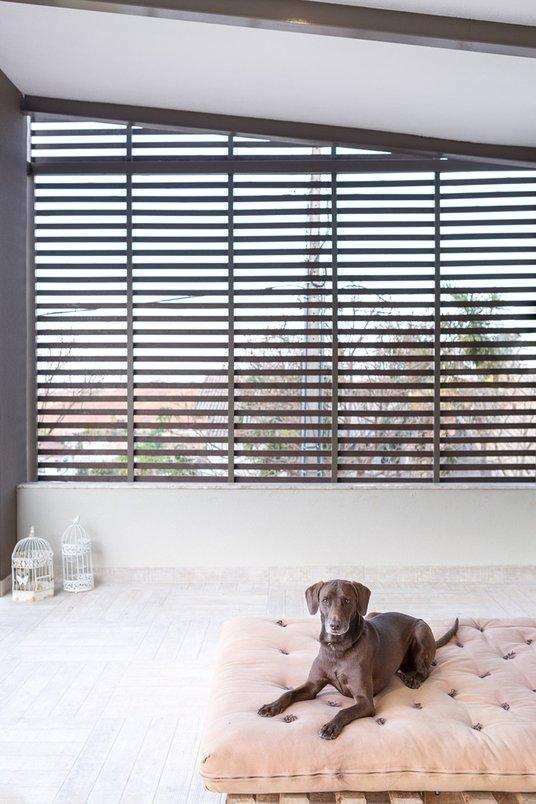 Varanda da Casa MM CoGa Arquitetura em Deck Eucalipto Autoclalado Pátina 60x60. Cachorro, dog.